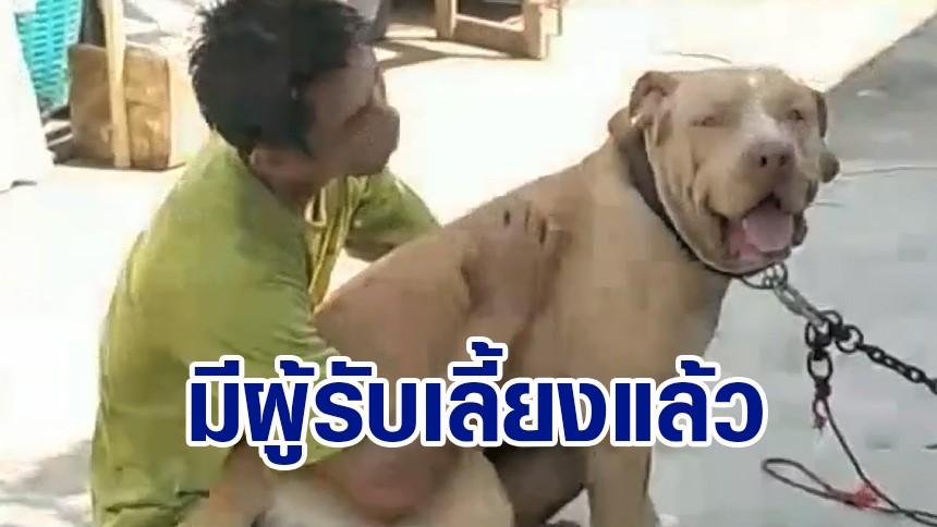 'ไจแอนท์' สุนัขขย้ำเจ้าของดับ มีคนรับเลี้ยงแล้ว เผย เข้ากับคนเลี้ยงใหม่ได้ดี