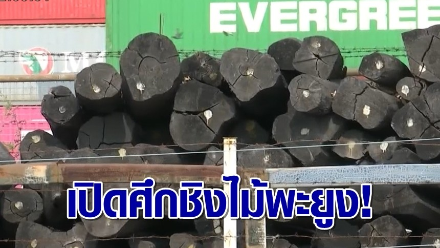 เอกชน-รัฐบาล สปป.ลาว เปิดศึดชิง ไม้พะยูง' 11 ตู้คอนเทนเนอร์ หลังอัยการไทยชี้เป็นไม่ใช่ไม้ที่ตัดในไทย