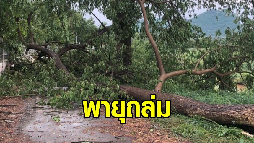 พายุพัดกระหน่ำ จ.เลย ลูกเห็บตกบ้านพัง – ฉะเชิงเทราเจอฝนถล่ม น้ำท่วมรถดับกลางทาง