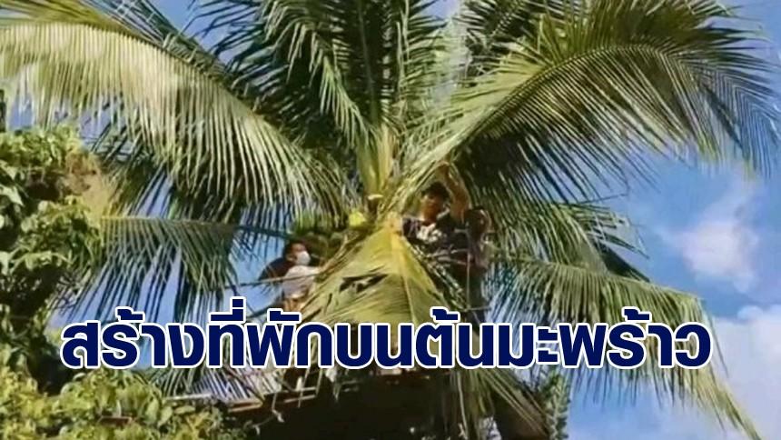 พ่อบ้านไอเดียเจ๋ง สร้างที่พักผ่อนบนต้นมะพร้าว สูง 13 เมตร ไว้รับรองเพื่อนฝูง
