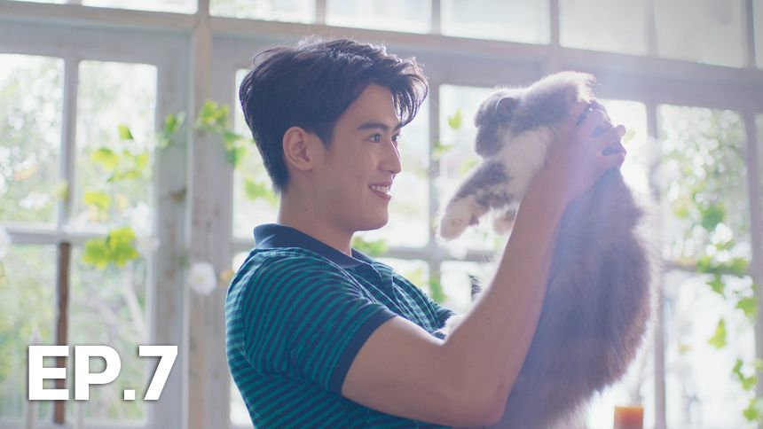 MEO Me&You แมวของเขาและรักของเรา EP.7