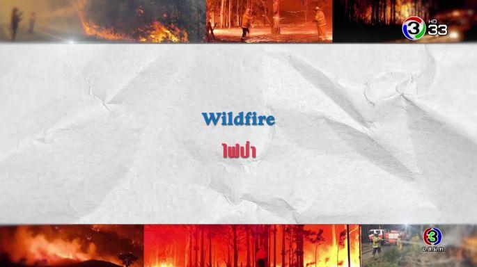 ศัพท์สอนรวย | Wildfire = ไฟป่า EP.9